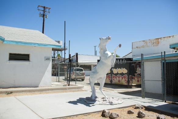 Desert #4. Restroom Stallion, Amboy