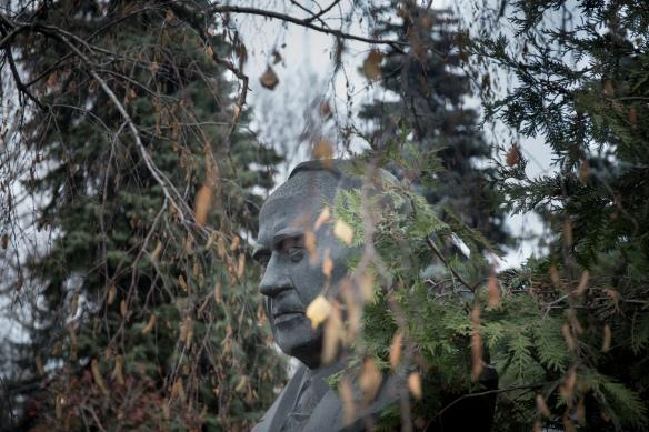 Stone-face #07: Aleksei Ivanovich Radzievskii