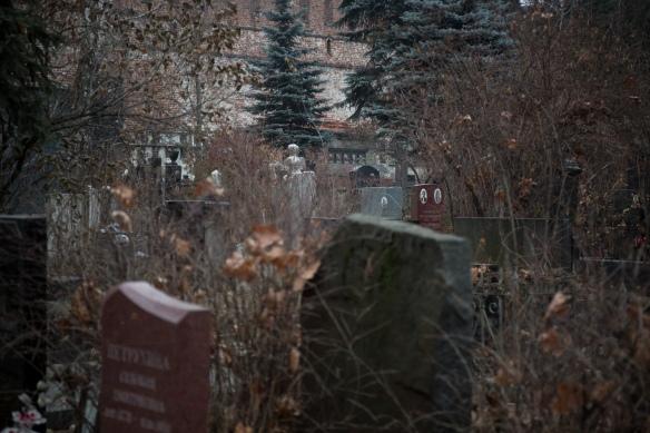 Novodevichy Cemetery #06