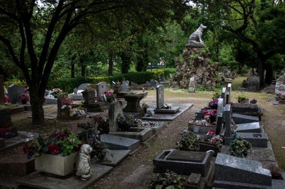 Pet Cemetery #03