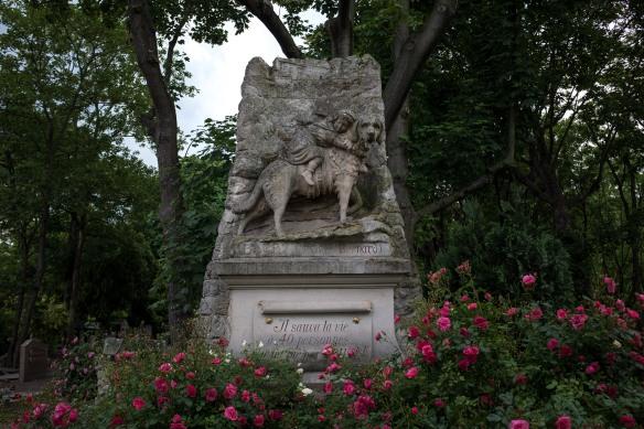 Pet Cemetery #06