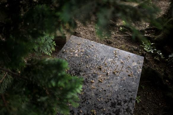 Pet Cemetery #07