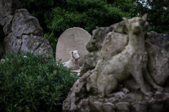 Pet Cemetery #08