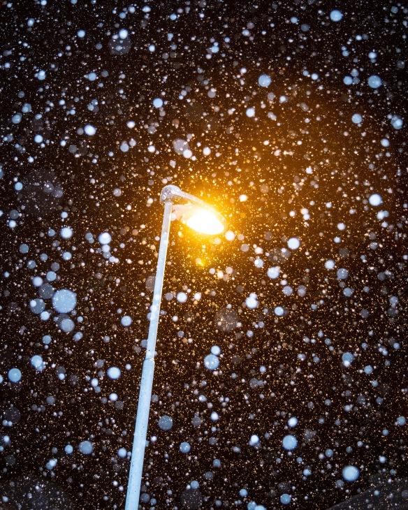 snownoborder
